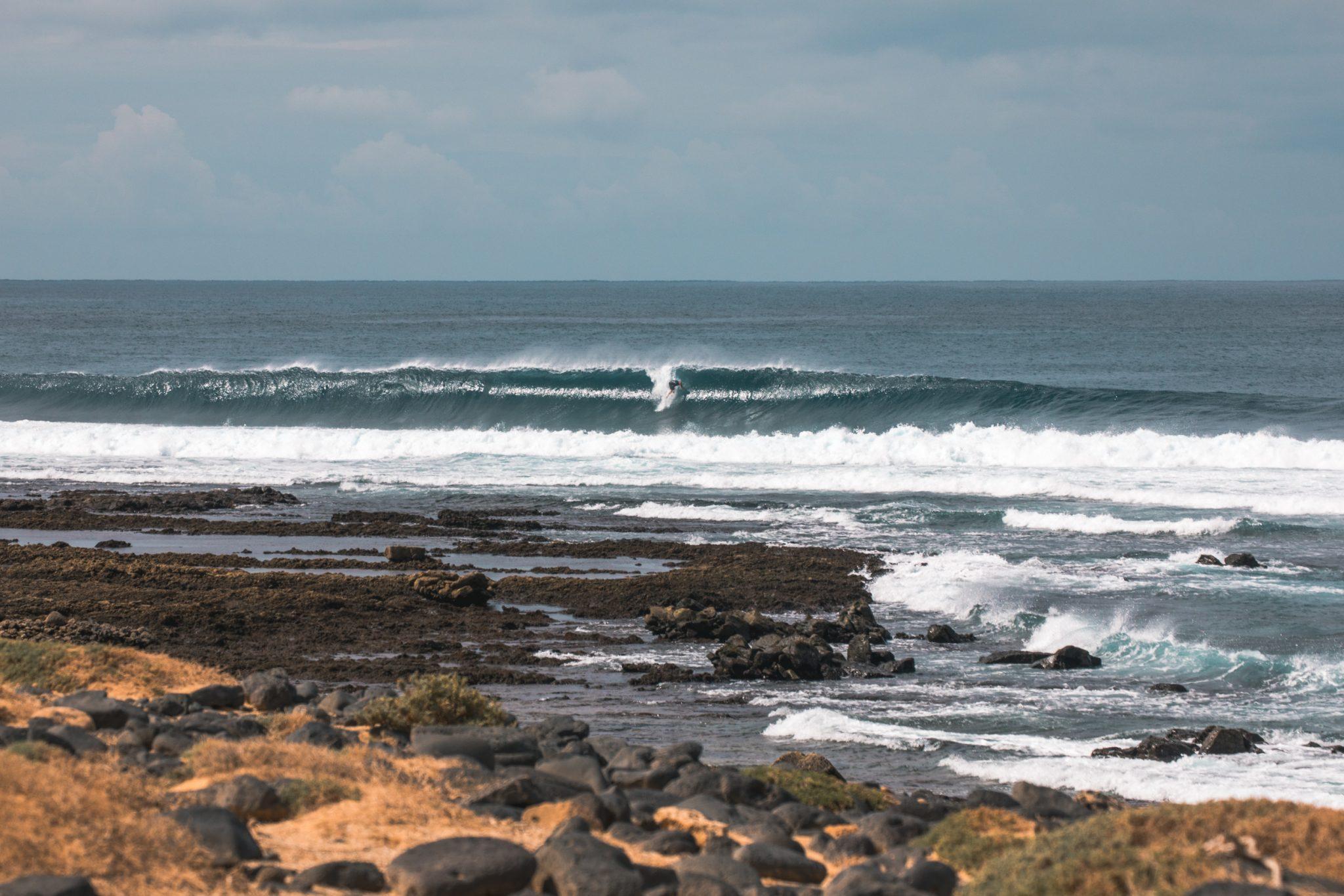 Los Lobos surf perfekt